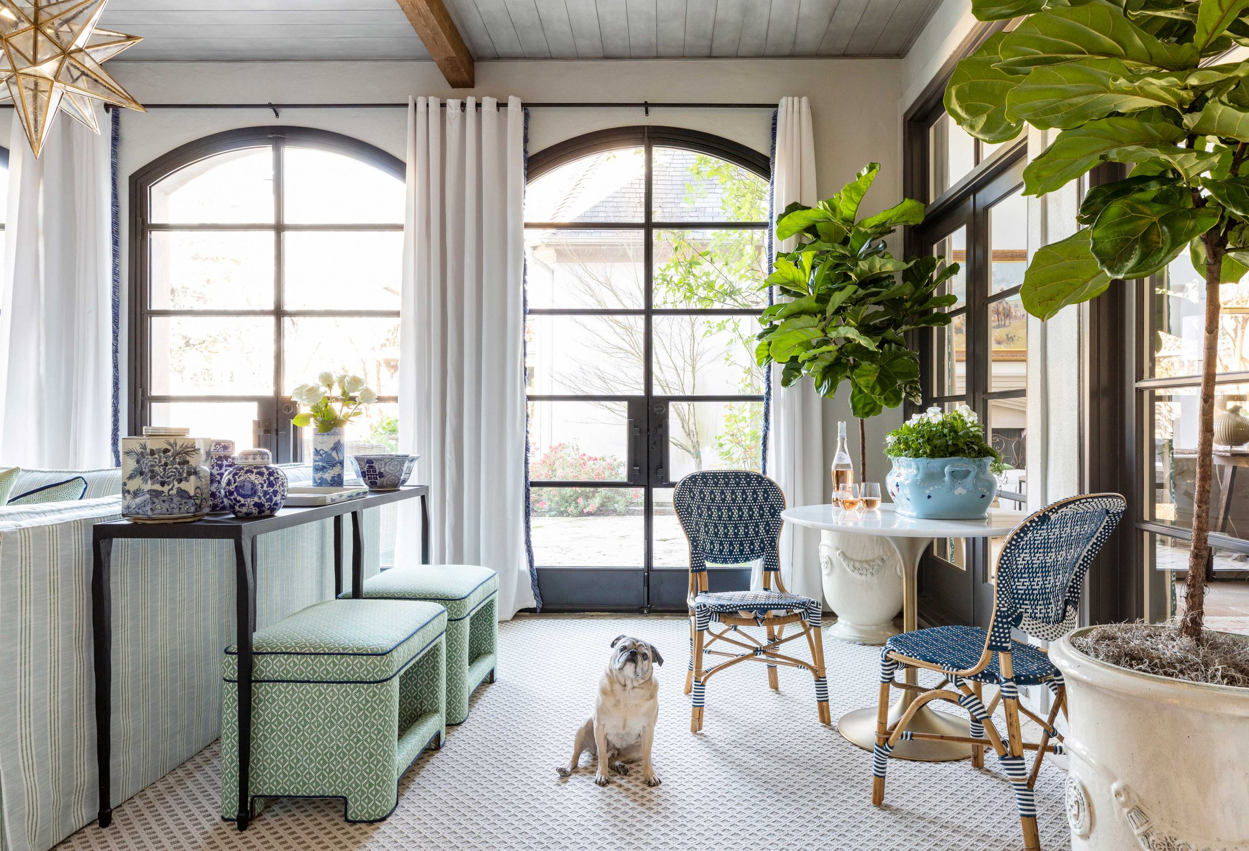 bright living room with puppy - Creative Tonic